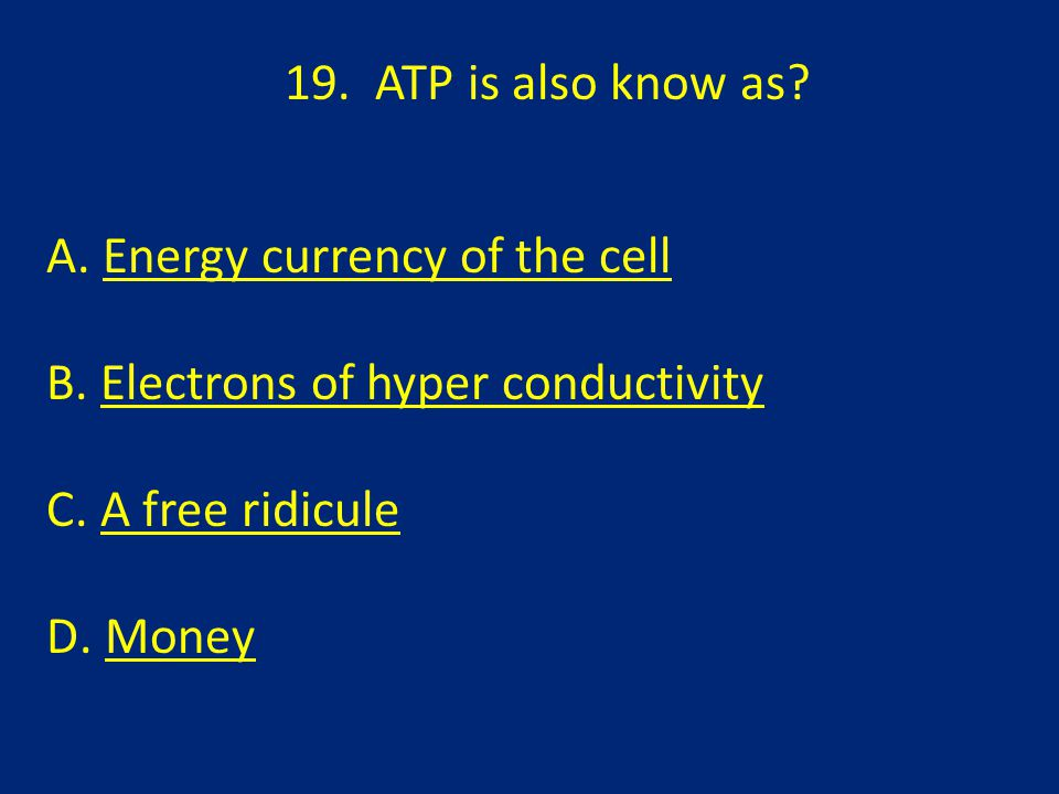 19.ATP is also know as. A. Energy currency of the cellEnergy currency of the cell B.