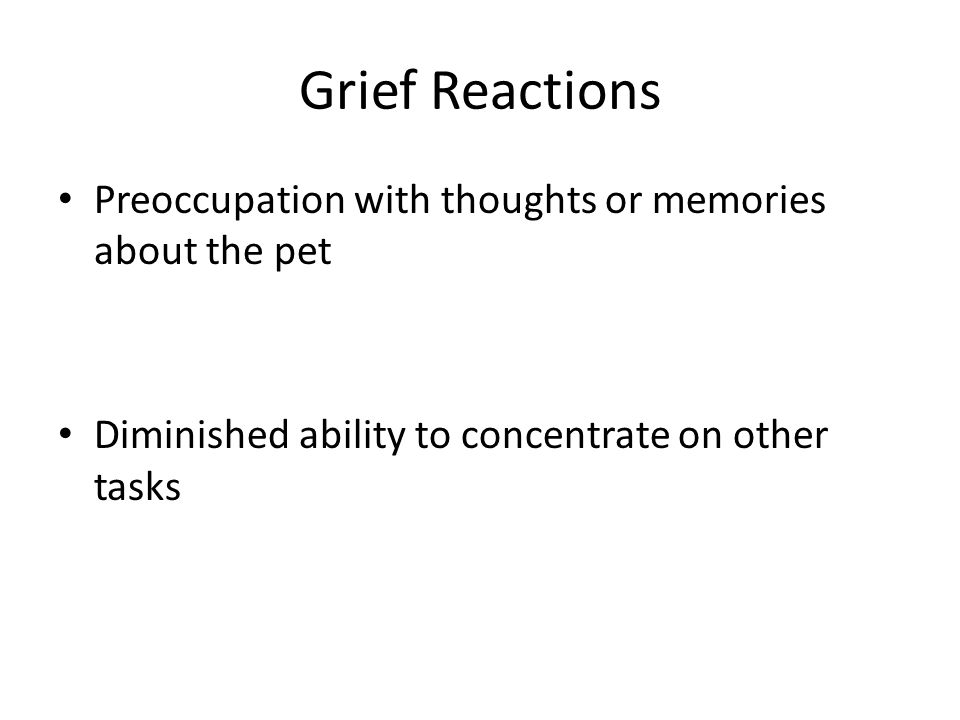 Grief Reactions Preoccupation with thoughts or memories about the pet Diminished ability to concentrate on other tasks
