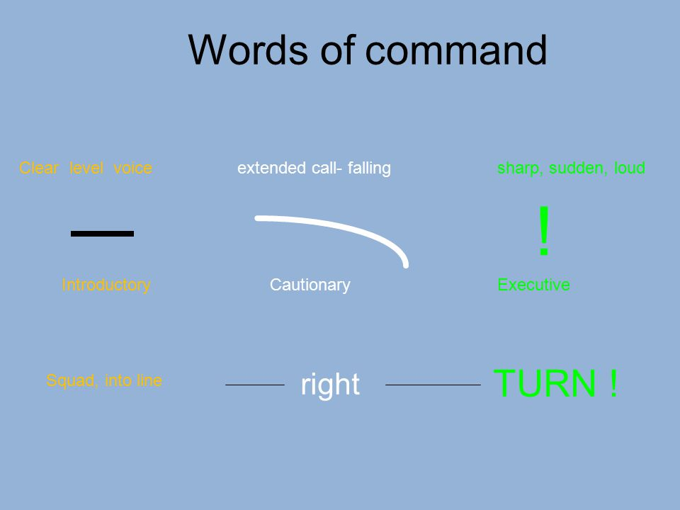 IntroductoryCautionaryExecutive Squad, into line right TURN ! Clear level voiceextended call- fallingsharp, sudden, loud ! Words of command