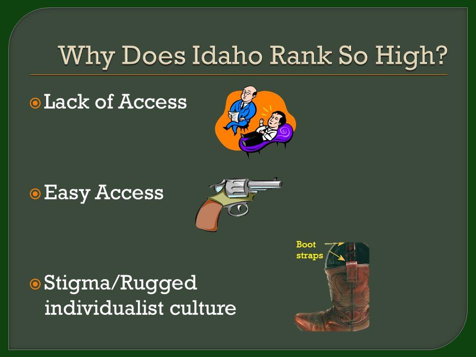  Lack of Access  Easy Access  Stigma/Rugged individualist culture Boot straps