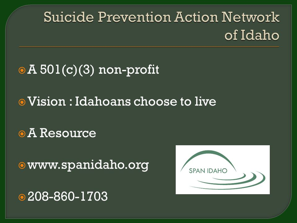 BOARD OF DIRECTORS 13 Volunteers STAFF Executive Director Resource Specialist REGIONAL CHAPTERS 8 Chapters Volunteer chairperson(s) Volunteer participants www.spanidaho.org 8 Driggs (new)