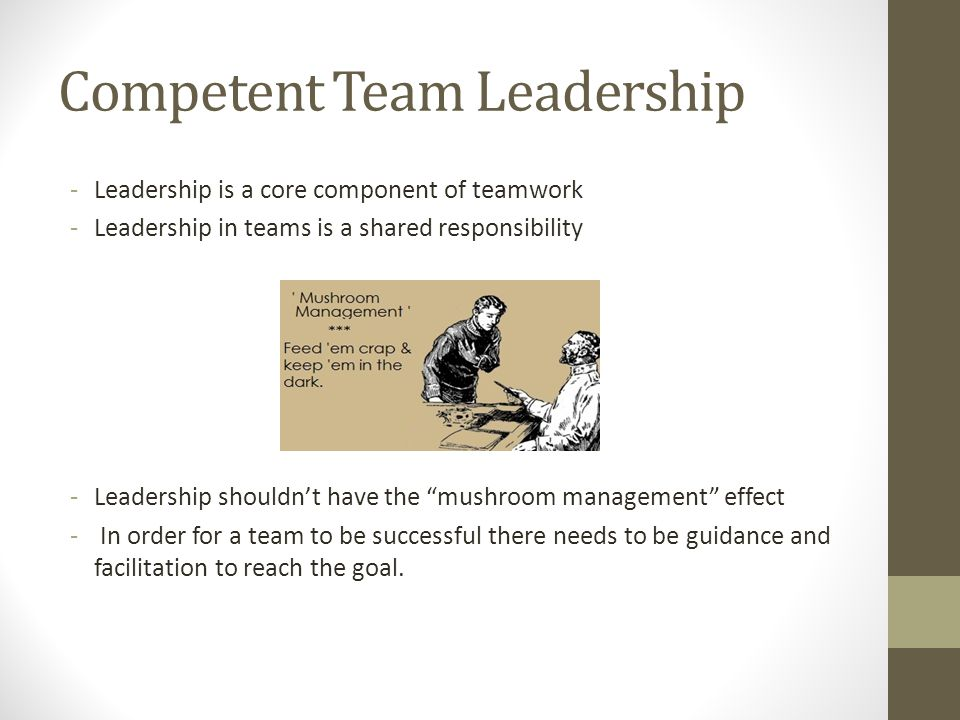 Competent Team Leadership -Leadership is a core component of teamwork -Leadership in teams is a shared responsibility -Leadership shouldn't have the mushroom management effect - In order for a team to be successful there needs to be guidance and facilitation to reach the goal.