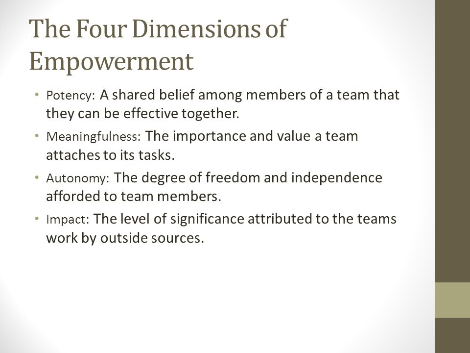 The Four Dimensions of Empowerment Potency: A shared belief among members of a team that they can be effective together.