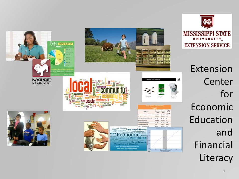 Extension Center for Economic Education and Financial Literacy 3