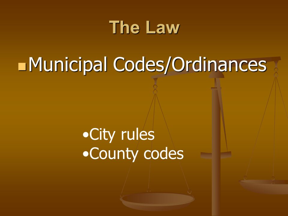 Municipal Codes/Ordinances Municipal Codes/Ordinances The Law City rules County codes