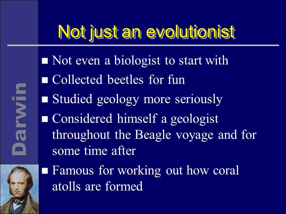 Not just an evolutionist n Not even a biologist to start with n Collected beetles for fun n Studied geology more seriously n Considered himself a geologist throughout the Beagle voyage and for some time after n Famous for working out how coral atolls are formed