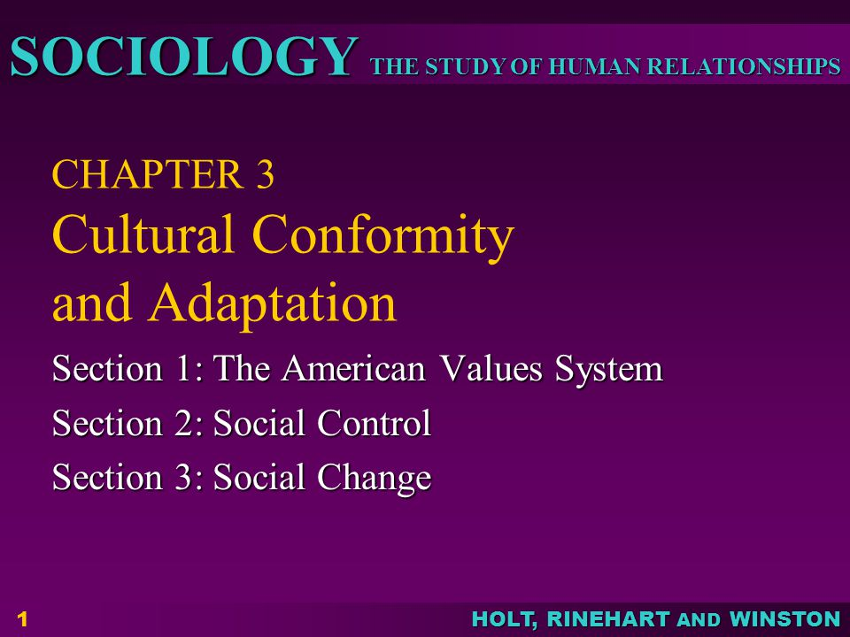 THE STUDY OF HUMAN RELATIONSHIPS SOCIOLOGY HOLT, RINEHART AND WINSTON 1 CHAPTER 3 Cultural Conformity and Adaptation Section 1: The American Values System Section 2: Social Control Section 3: Social Change