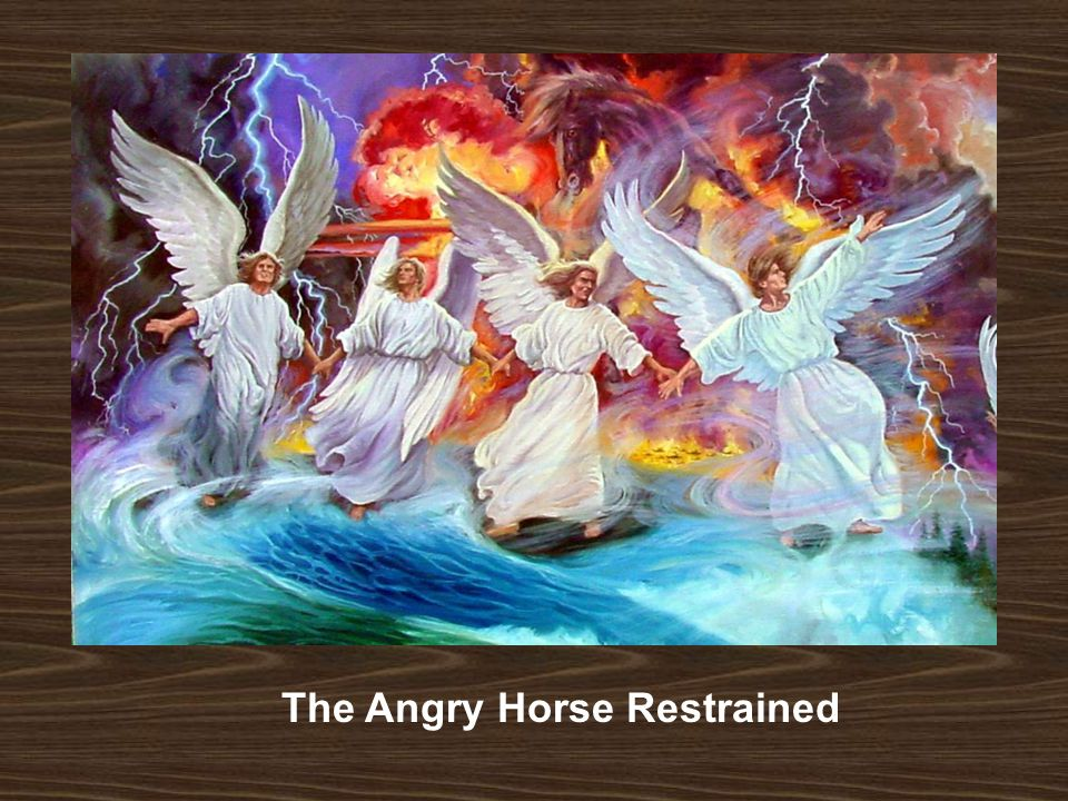 The Angry Horse Restrained
