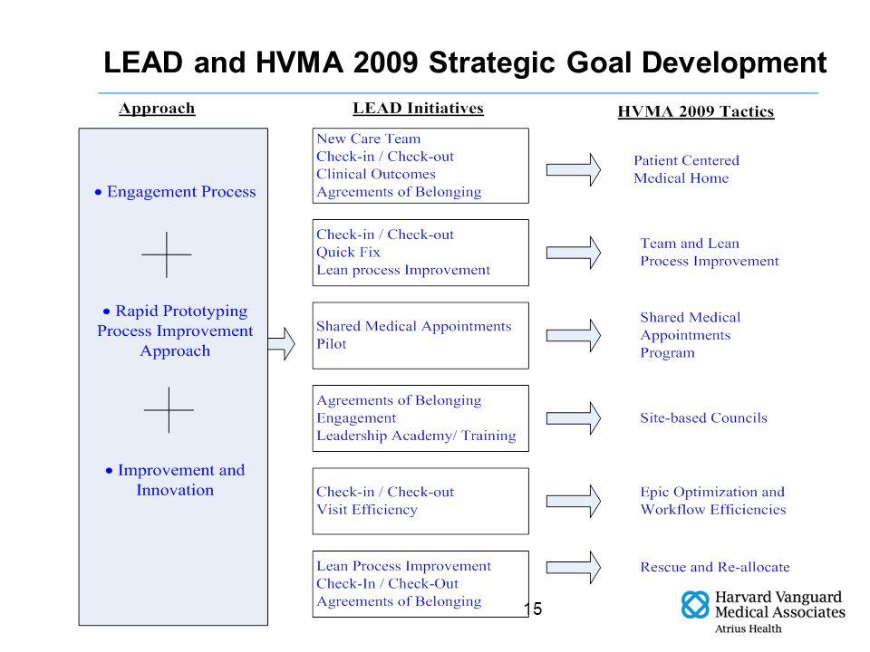 15 LEAD and HVMA 2009 Strategic Goal Development