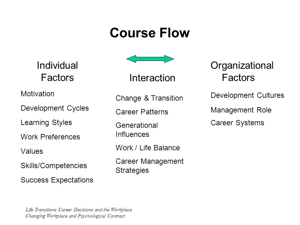 Life Transitions Career Decisions and the Workplace Changing Workplace and Psychological Contract Course Flow Individual Factors Motivation Development Cycles Learning Styles Work Preferences Values Skills/Competencies Success Expectations Organizational Factors Development Cultures Management Role Career Systems Interaction Change & Transition Career Patterns Generational Influences Work / Life Balance Career Management Strategies