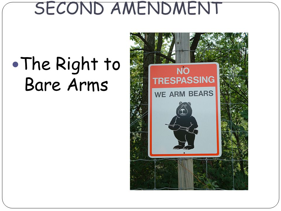 SECOND AMENDMENT The Right to Bare Arms