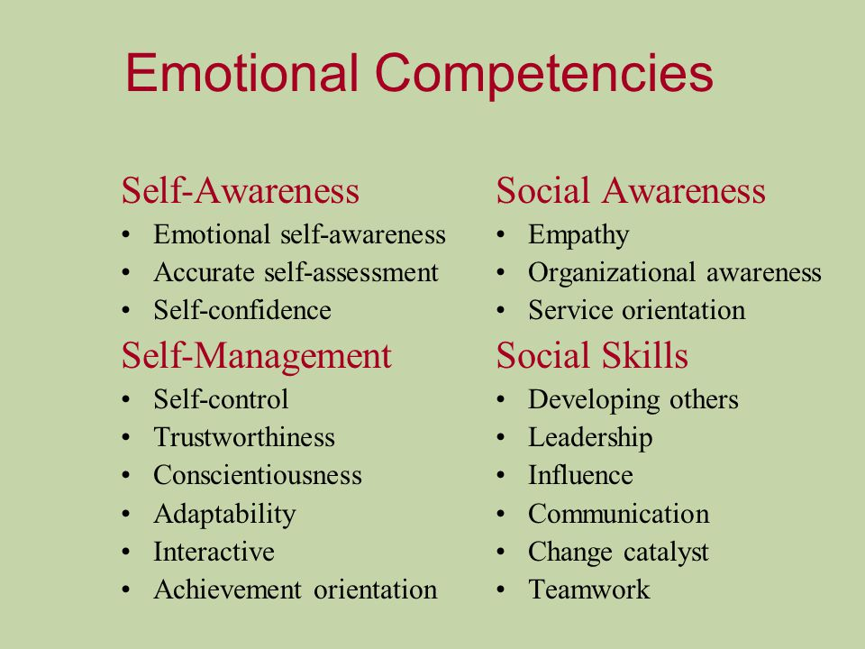 Emotional Competencies Self-Awareness Emotional self-awareness Accurate self-assessment Self-confidence Self-Management Self-control Trustworthiness Conscientiousness Adaptability Interactive Achievement orientation Social Awareness Empathy Organizational awareness Service orientation Social Skills Developing others Leadership Influence Communication Change catalyst Teamwork