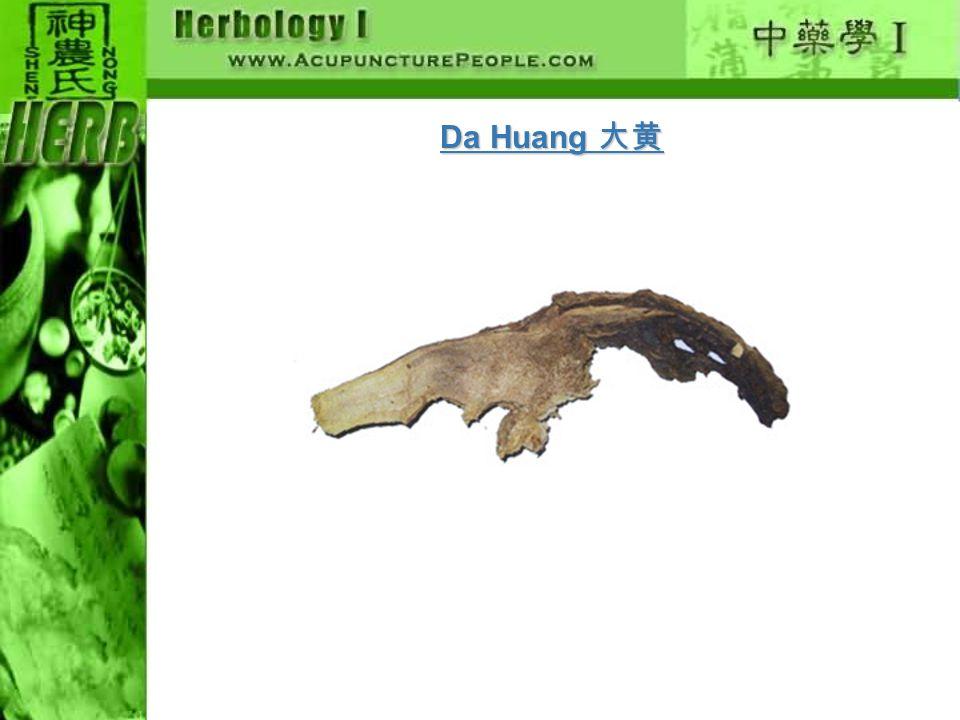 Da Huang 大黄