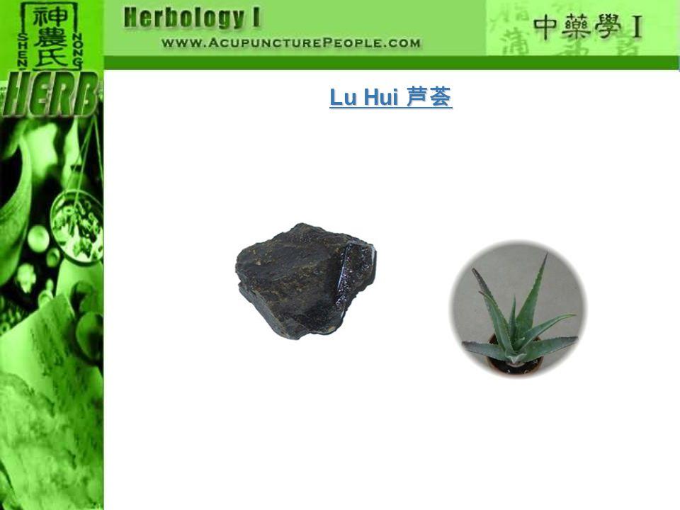 Lu Hui 芦荟