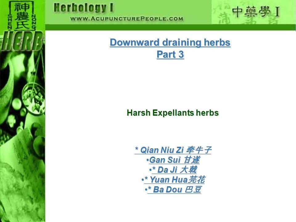 Downward draining herbs Part 3 Harsh Expellants herbs Moist Laxatives * Qian Niu Zi 牵牛子 Gan Sui 甘遂Gan Sui 甘遂 * Da Ji 大戟* Da Ji 大戟 * Yuan Hua 芫花* Yuan Hua 芫花 * Ba Dou 巴豆* Ba Dou 巴豆