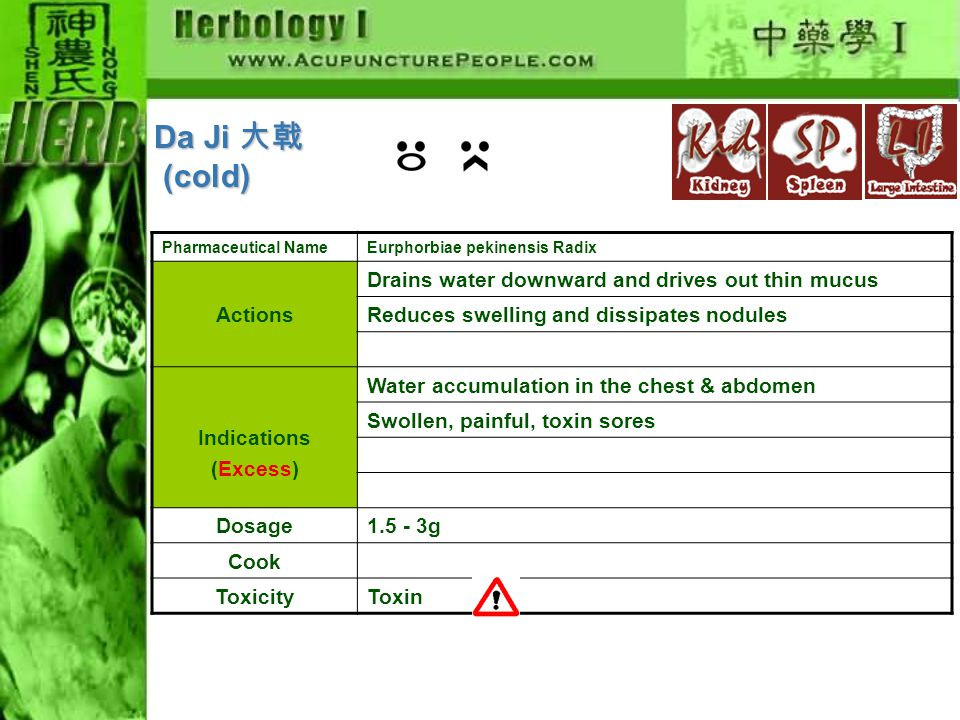Pharmaceutical NameEurphorbiae pekinensis Radix Actions Drains water downward and drives out thin mucus Reduces swelling and dissipates nodules Indications (Excess) Water accumulation in the chest & abdomen Swollen, painful, toxin sores Dosage1.5 - 3g Cook ToxicityToxin Da Ji 大戟 (cold) (cold)