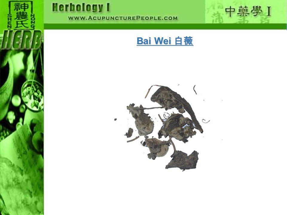 Bai Wei 白薇