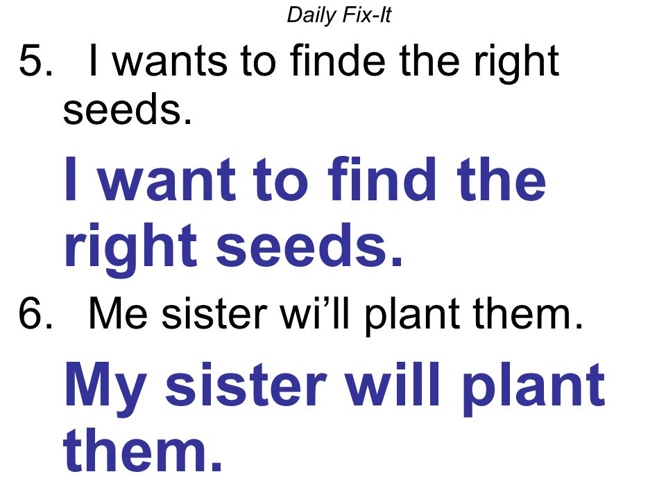 Daily Fix-It 5. I wants to finde the right seeds.