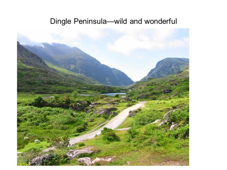 Dingle Peninsula—wild and wonderful