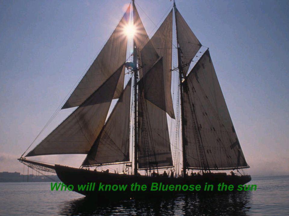 Who will know the Bluenose in the sun