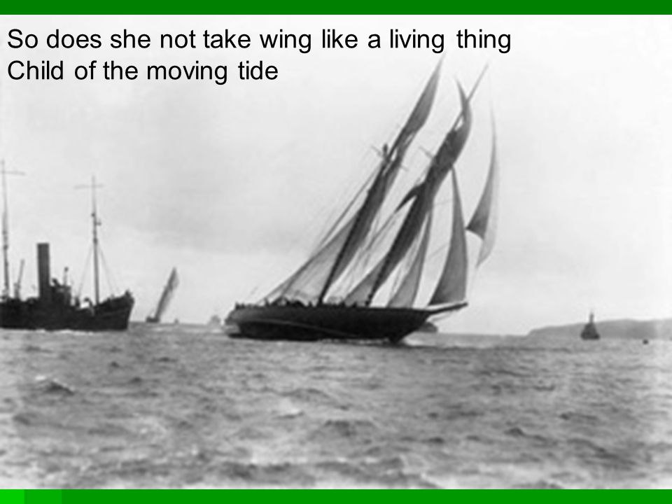 So does she not take wing like a living thing Child of the moving tide