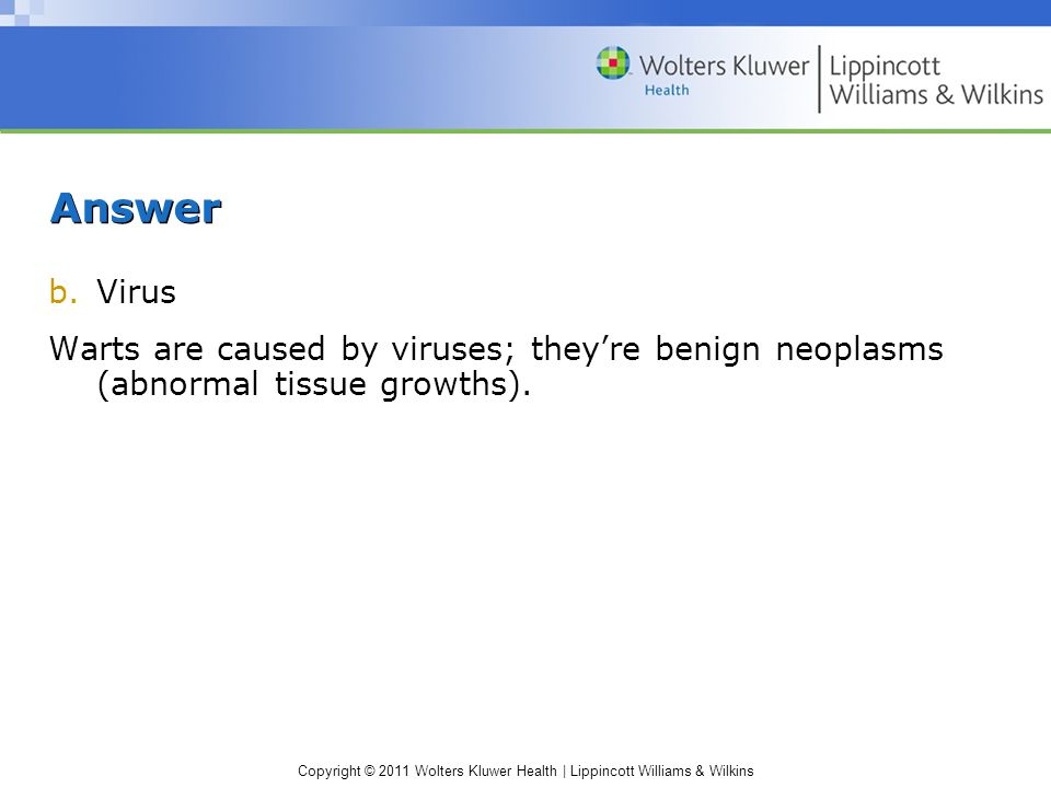 Copyright © 2011 Wolters Kluwer Health | Lippincott Williams & Wilkins Scenario Mrs.