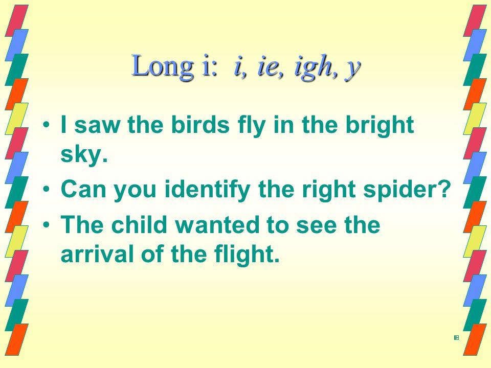 Long i: i, ie, igh, y I saw the birds fly in the bright sky.