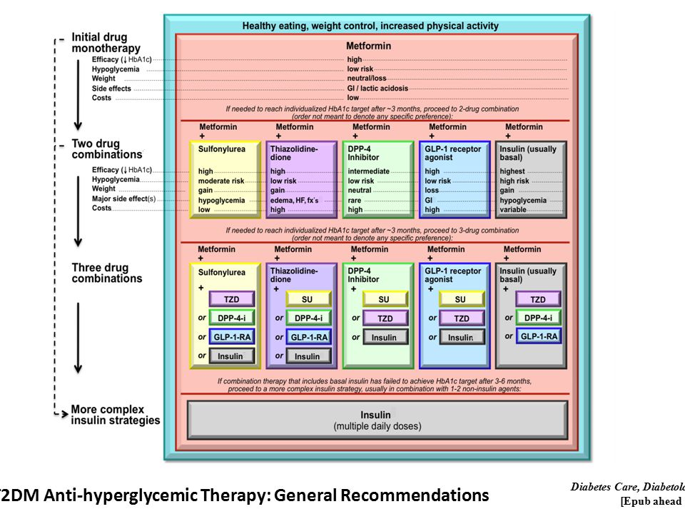 T2DM Anti-hyperglycemic Therapy: General Recommendations Diabetes Care, Diabetologia.