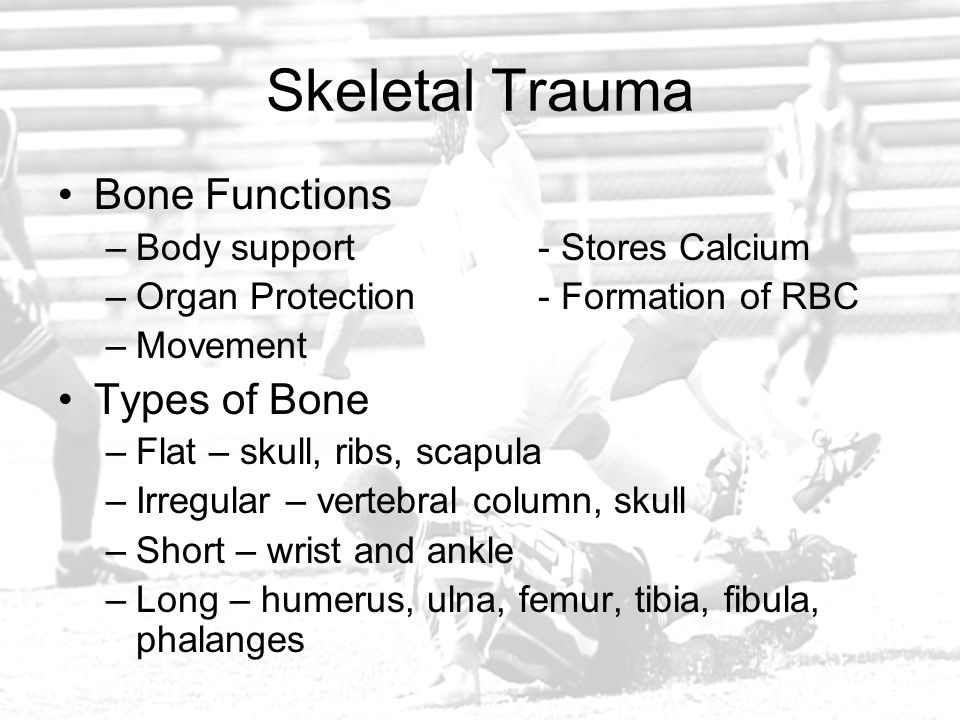Skeletal Trauma Bone Functions –Body support- Stores Calcium –Organ Protection- Formation of RBC –Movement Types of Bone –Flat – skull, ribs, scapula