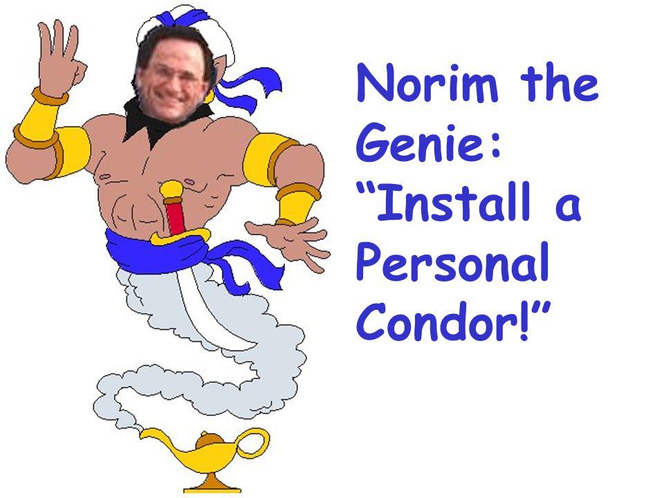 Norim the Genie: Install a Personal Condor!