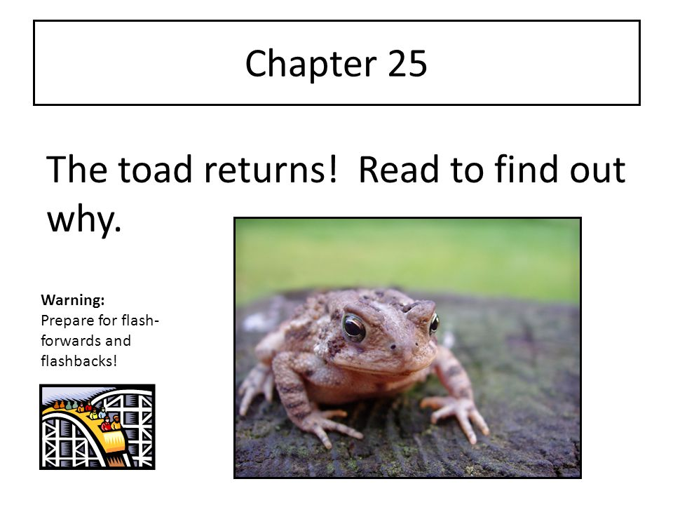 Chapter 25 The toad returns! Read to find out why. Warning: Prepare for flash- forwards and flashbacks!
