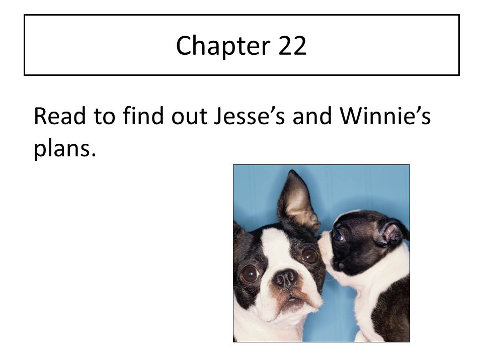 Chapter 22 Read to find out Jesse's and Winnie's plans.