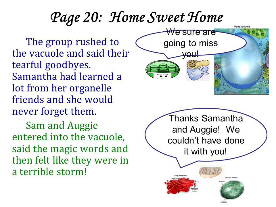 Page 20: Home Sweet Home The group rushed to the vacuole and said their tearful goodbyes.