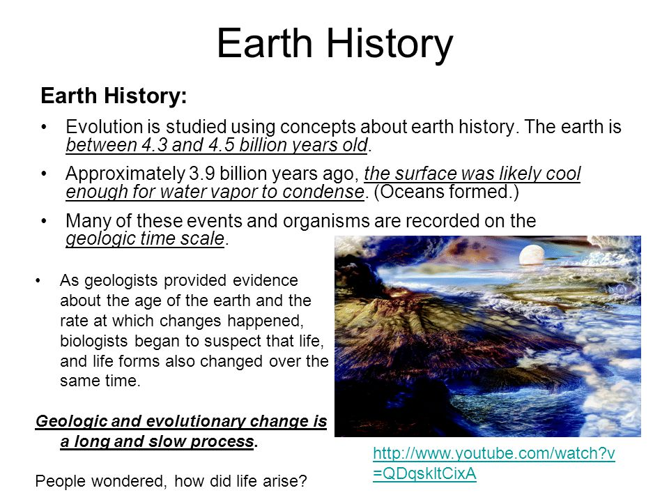 Earth History Earth History: Evolution is studied using concepts about earth history.
