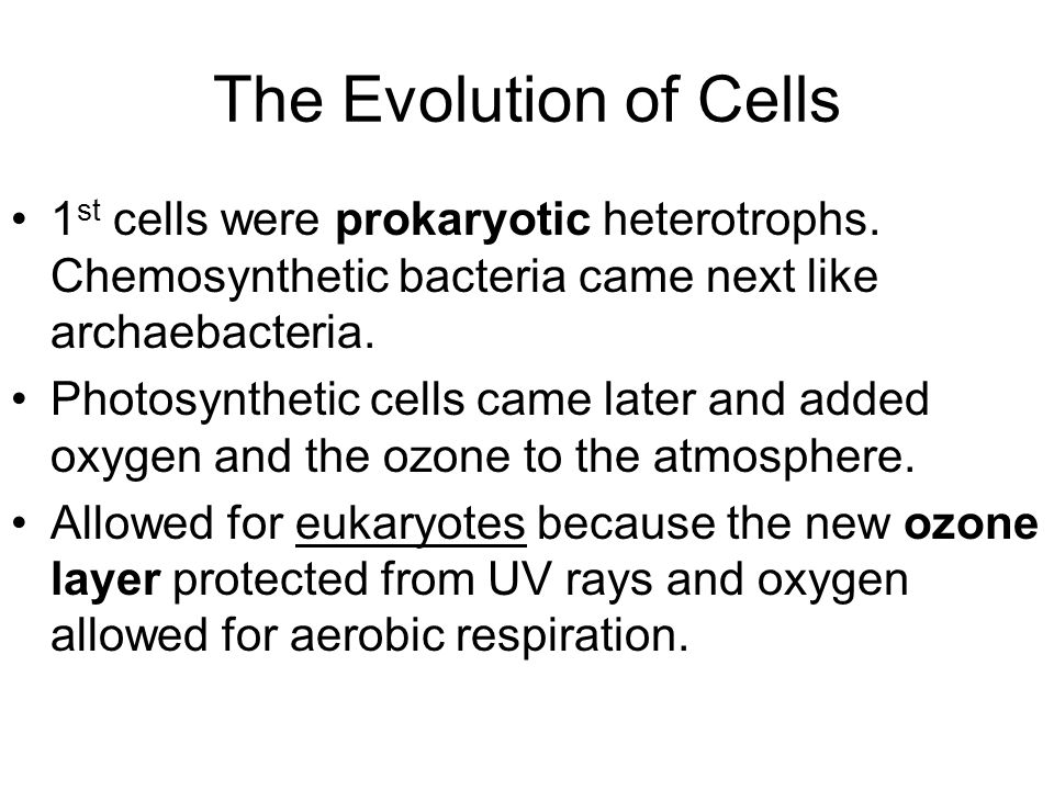 The Evolution of Cells 1 st cells were prokaryotic heterotrophs.