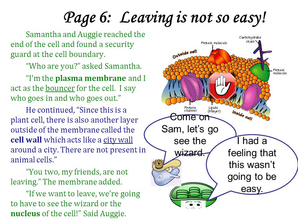 Page 6: Leaving is not so easy.