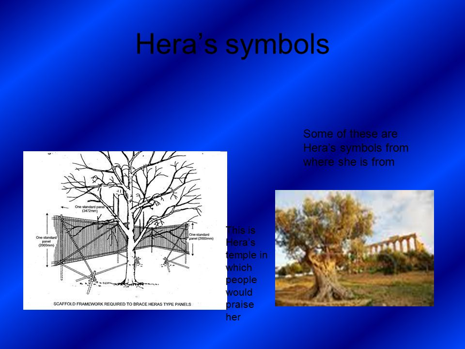 Hera's symbols Some of these are Hera's symbols from where she is from This is Hera's temple in which people would praise her