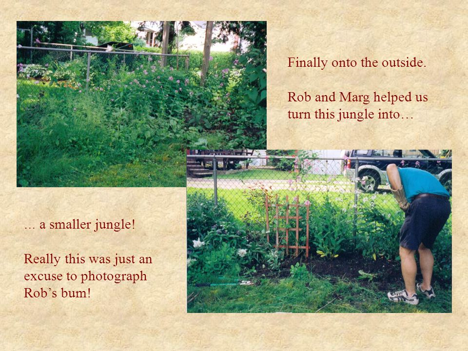 Finally onto the outside. Rob and Marg helped us turn this jungle into… … a smaller jungle.