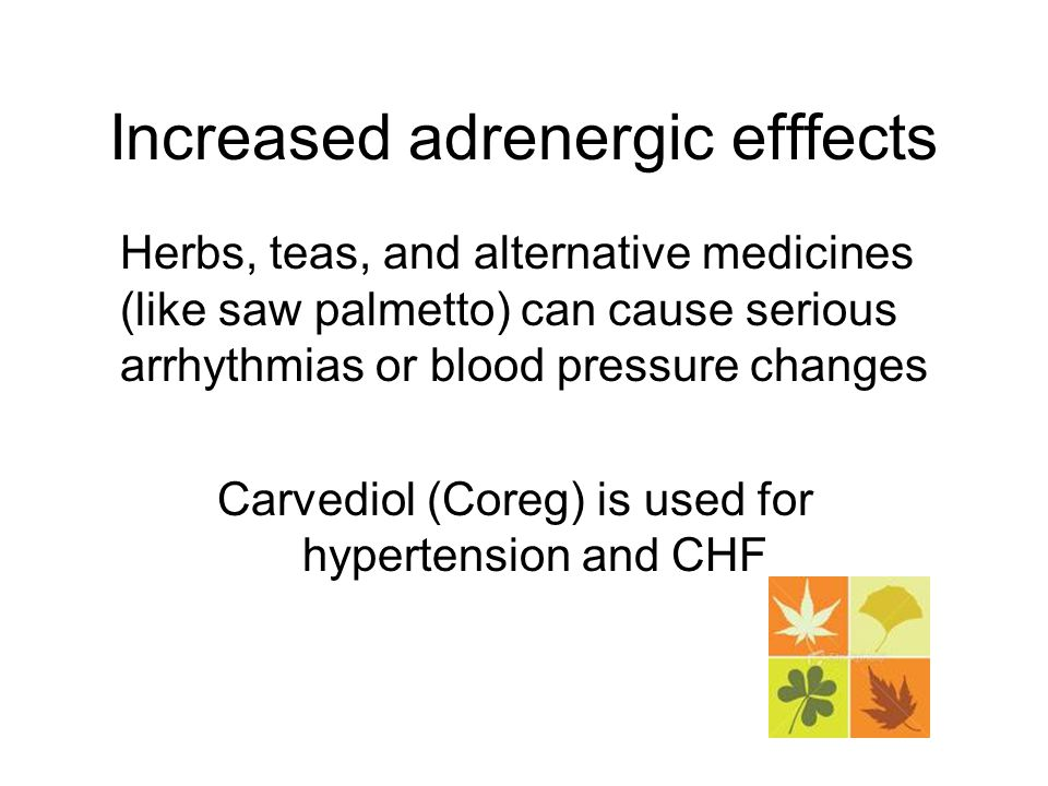 Increased adrenergic efffects Herbs, teas, and alternative medicines (like saw palmetto) can cause serious arrhythmias or blood pressure changes Carvediol (Coreg) is used for hypertension and CHF