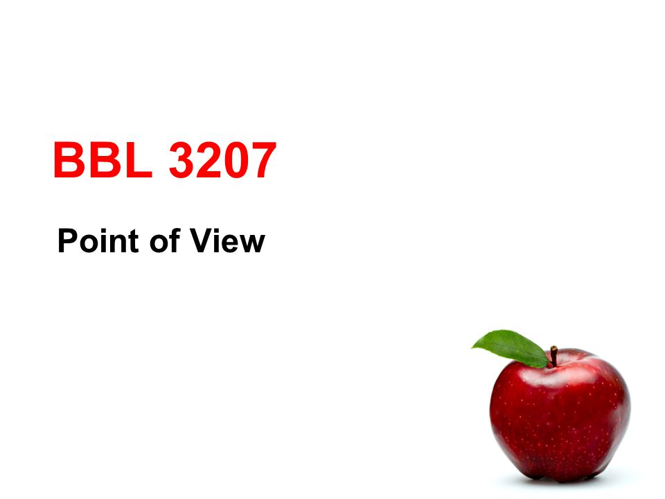 BBL 3207 Point of View