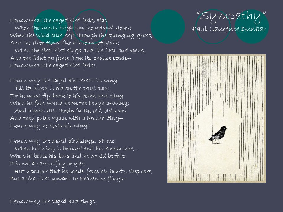 """""""Sympathy"""" Paul Laurence Dunbar I know what the caged bird feels, alas! When the sun is bright on the upland slopes; When the wind stirs soft through"""