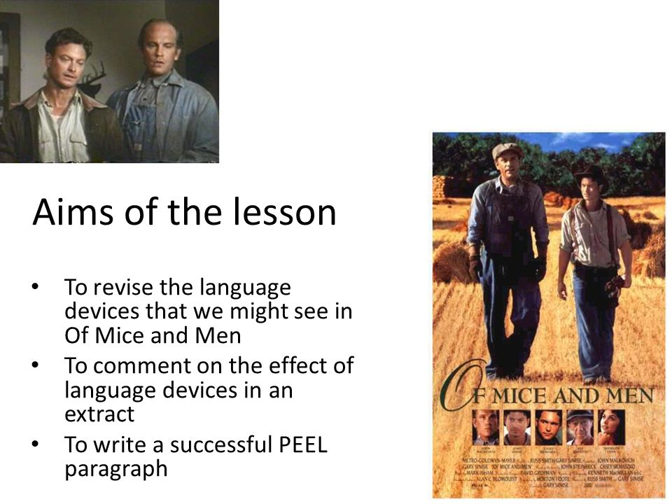 Aims of the lesson To revise the language devices that we might see in Of Mice and Men To comment on the effect of language devices in an extract To write a successful PEEL paragraph