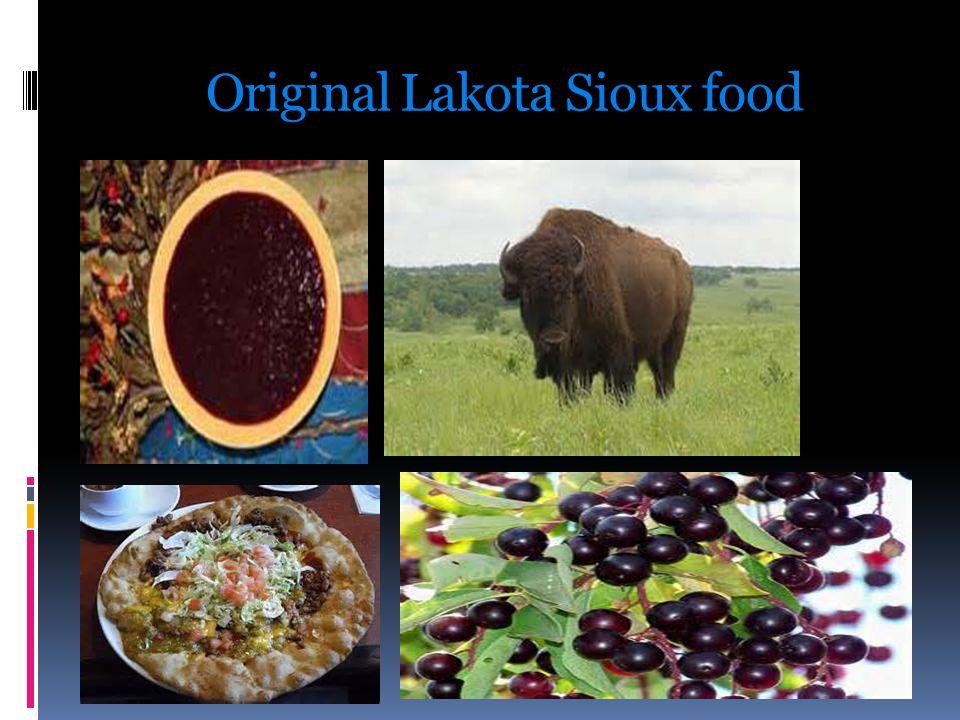 Original Lakota Sioux food