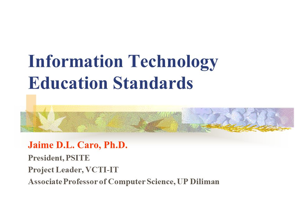 Information Technology Education Standards Jaime D.L.