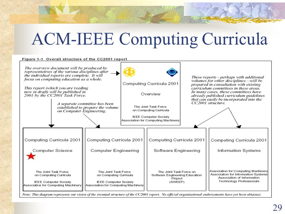 29 ACM-IEEE Computing Curricula