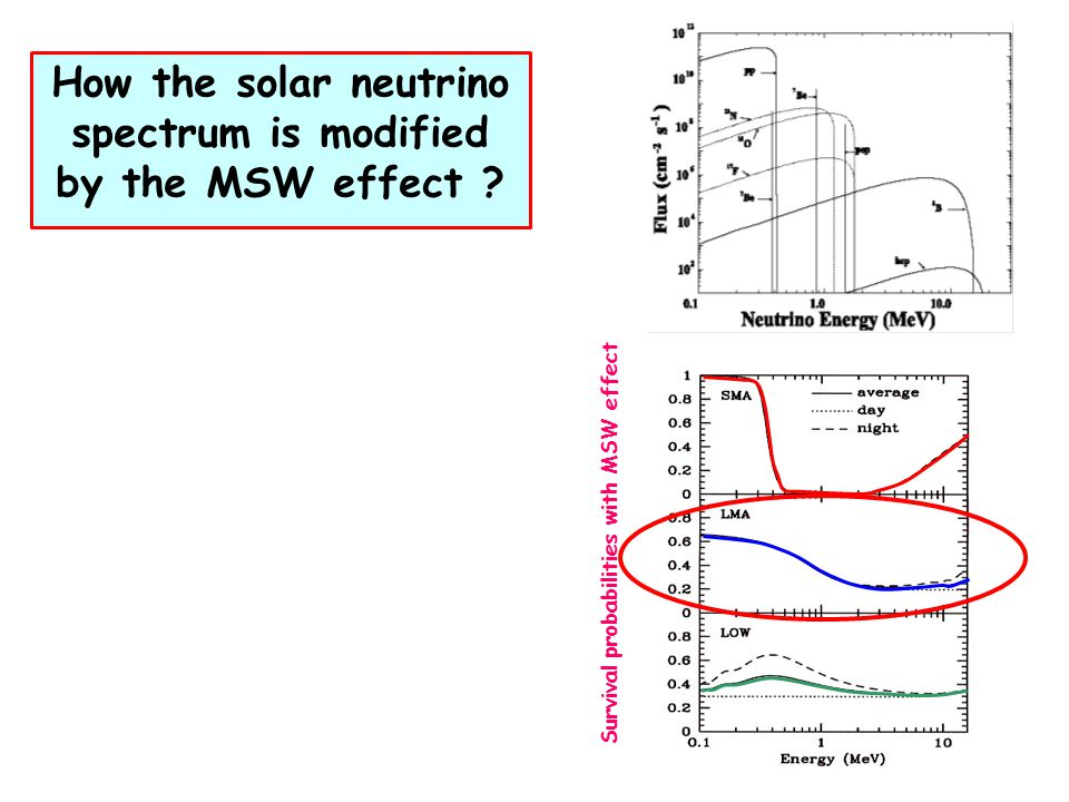 Survival probabilities with MSW effect How the solar neutrino spectrum is modified by the MSW effect