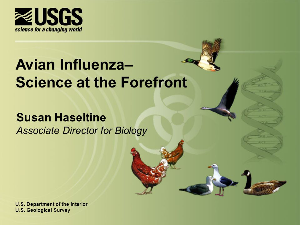 Susan Haseltine Associate Director for Biology U.S.
