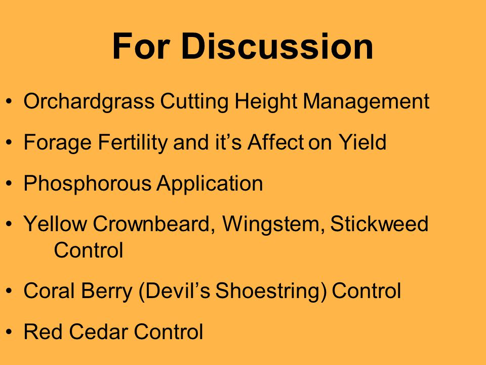 For Discussion Orchardgrass Cutting Height Management Forage Fertility and it's Affect on Yield Phosphorous Application Yellow Crownbeard, Wingstem, Stickweed Control Coral Berry (Devil's Shoestring) Control Red Cedar Control