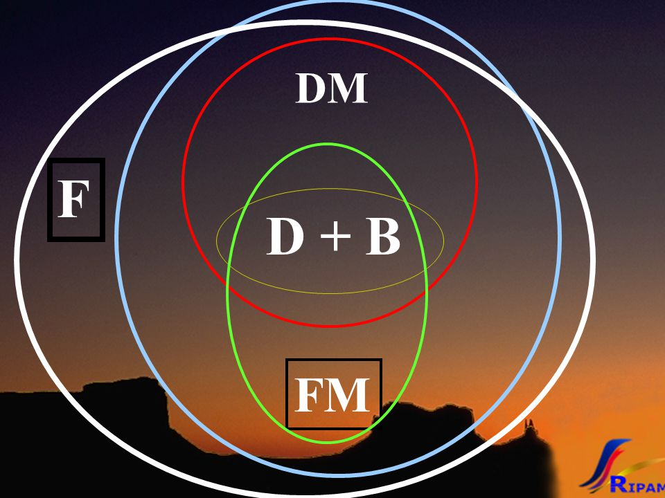 D + B DM FM F