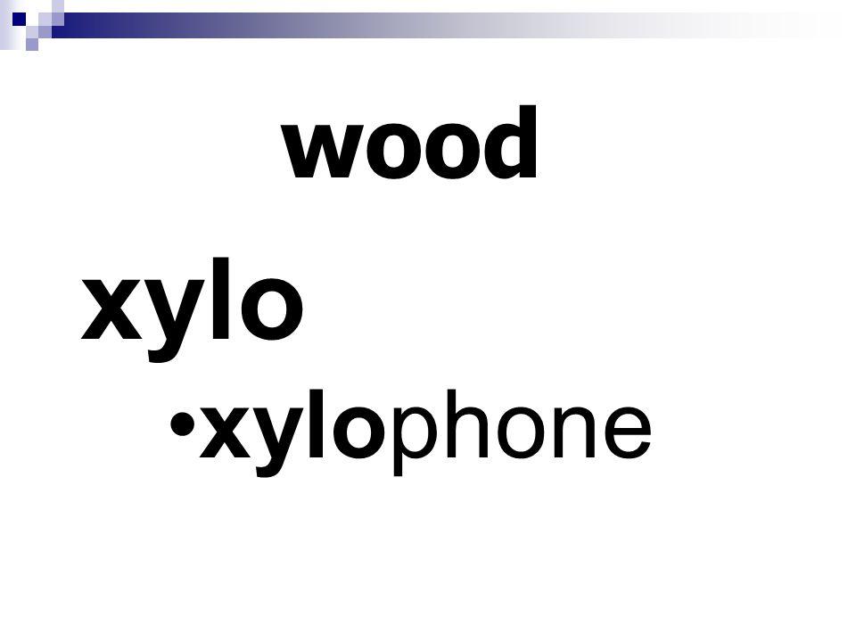 wood xylo xylophone